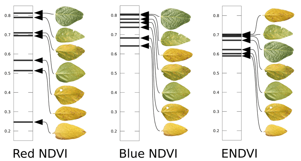 soybean leaf reflectance NDVI comparisons_tr